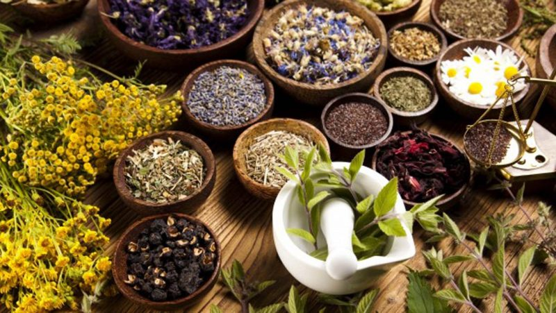 african-herb-suppliers-south-africa
