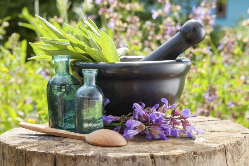 herbology-herbs